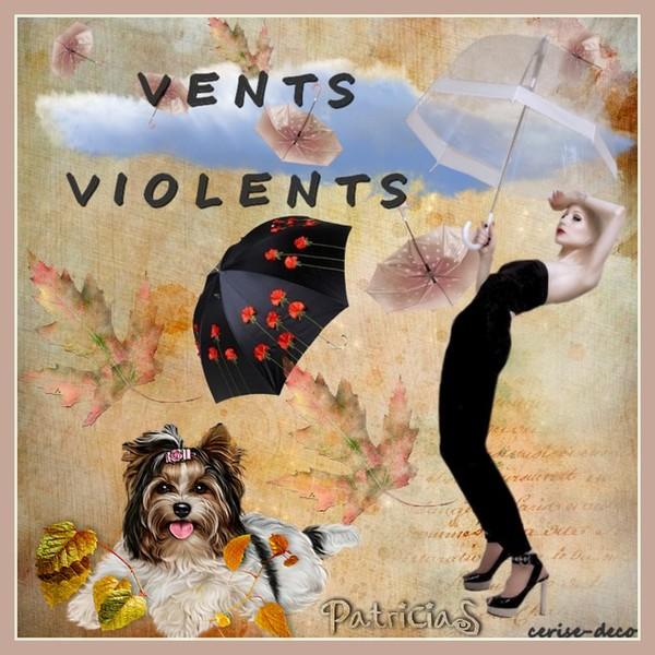 vents violents